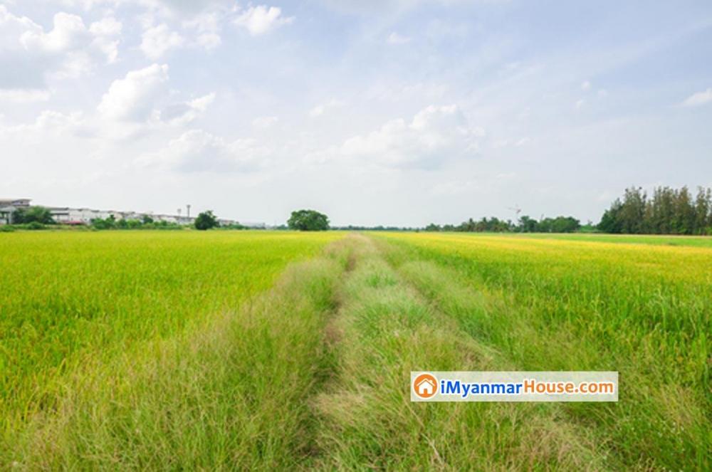 အားလံုး သိထားသင့္သည္ ေျမအဆင့္အတန္း သို႕မဟုတ္ ေျမအမ်ိဳးအစားမ်ား - Property Knowledge in Myanmar from iMyanmarHouse.com