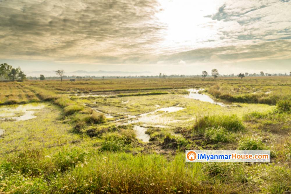 လယ်ယာမြေကိုအခြားနည်းဖြင့်အသုံးပြုရန် လျှောက်ထားချက်နှင့် ပက်သက်၍ ဥပဒေရေးရာသိမှတ်ဖွယ်ရာ - Property Knowledge in Myanmar from iMyanmarHouse.com