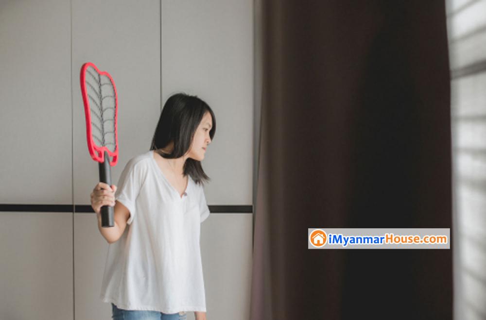 နေအိမ်မှာ ခြင်ကင်းစေမယ့် အိမ်တွင်းနည်းလမ်းများ - Property Knowledge in Myanmar from iMyanmarHouse.com