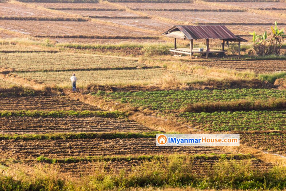 ဝယ်ယူထားသည့်မြေပေါ်တွင် ကျူးကျော်ဝင်ရောက်ခြင်းအတွက် ဆောင်ရွက်ရန် - Property Knowledge in Myanmar from iMyanmarHouse.com