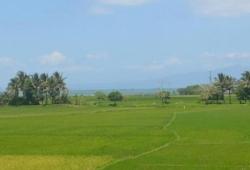 (1.83)Acre, Land