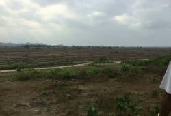 Ponnagyun , Rakhine State