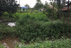 40'x60' land for sale