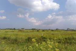 (SL 14-000969) For Sale Myaung Daga Industrial Zone, Mhawbi TSP.