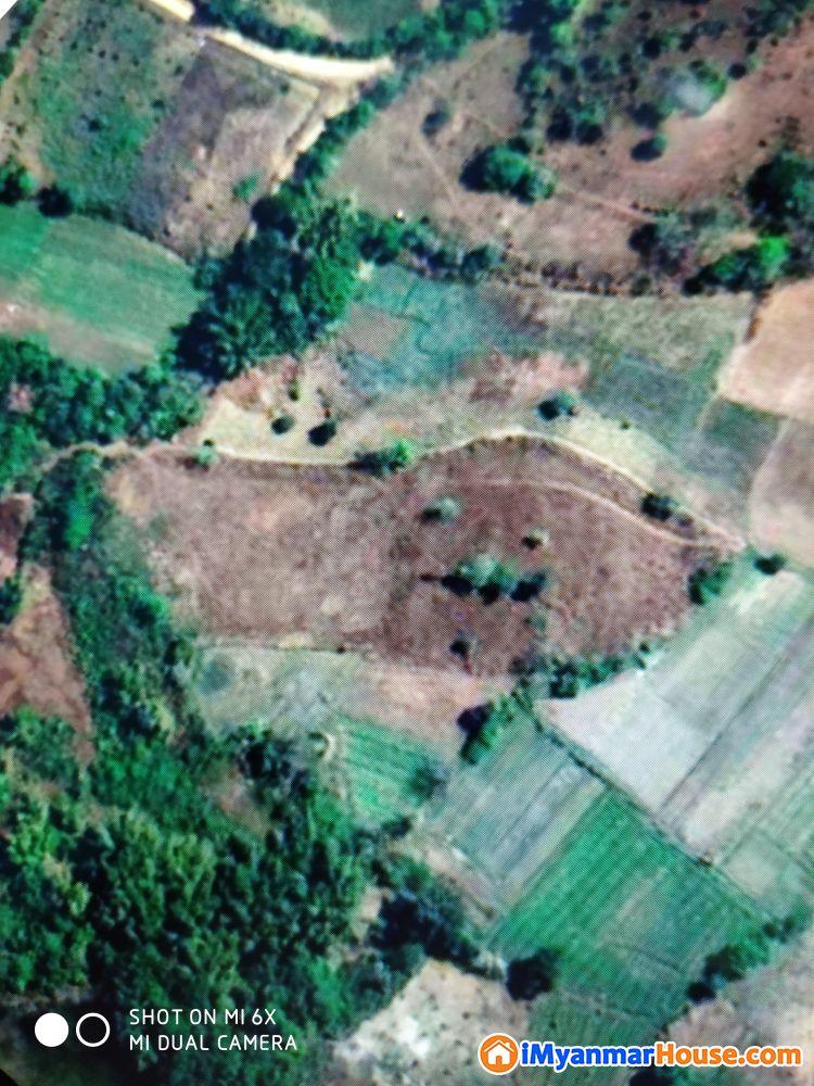Land for sale near Taunggyi - ေရာင္းရန္ - ေတာင္ႀကီး (Taunggyi) - ရွမ္းျပည္နယ္ (Shan State) - 370 သိန္း (က်ပ္) - S-7458224 | iMyanmarHouse.com