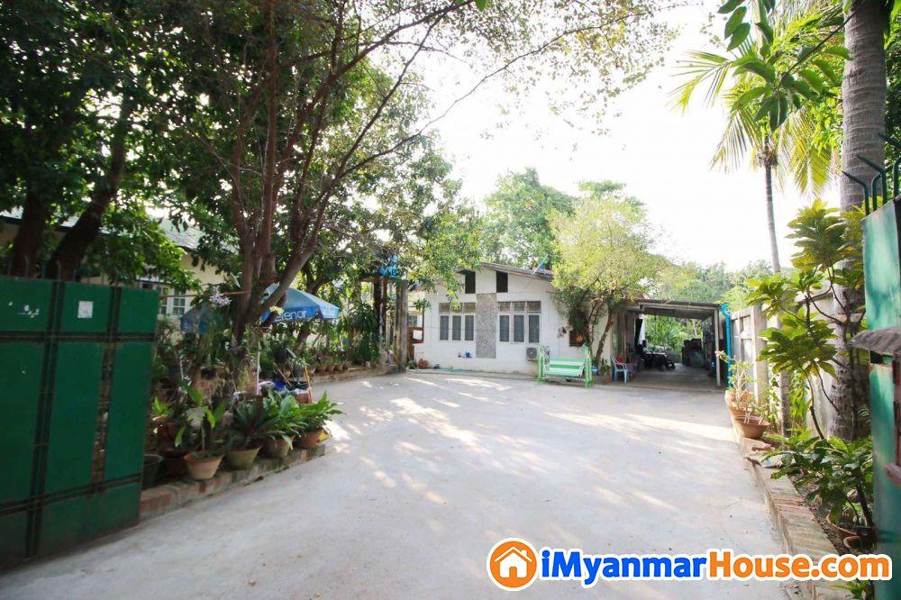 မရမ်းကုန်းလမ်းသန့် မြေကျယ် နေရာကောင်းရောင်းရန် - ေရာင္းရန္ - မရမ္းကုန္း (Mayangone) - ရန္ကုန္တိုင္းေဒသႀကီး (Yangon Region) - 6,500 သိန္း (က်ပ္) - S-8291763 | iMyanmarHouse.com