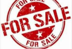 ဒဂုံမြို့သစ်မြောက်ပိုင်း ၃၈၇ပ်ကွက် လုံးချင်းအိမ်အမြန် ရောင်းမည်