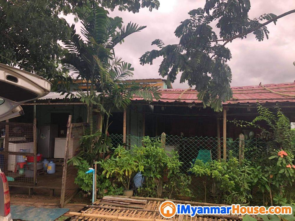 အိမ်ရောင်းရန် - ရောင်းရန် - ဒဂုံမြို့သစ် အရှေ့ပိုင်း (Dagon Myothit (East)) - ရန်ကုန်တိုင်းဒေသကြီး (Yangon Region) - 450 သိန်း (ကျပ်) - S-8797661 | iMyanmarHouse.com