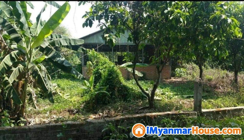 ခြံမြေမှော်ဘီရောင်းရန် - ရောင်းရန် - မှော်ဘီ (Hmawbi) - ရန်ကုန်တိုင်းဒေသကြီး (Yangon Region) - 400 သိန်း (ကျပ်) - S-9330584 | iMyanmarHouse.com