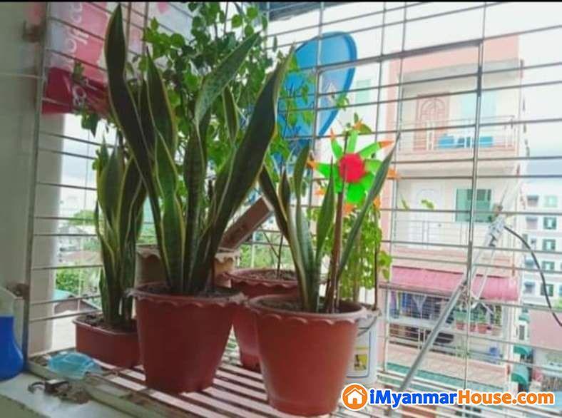 P/S/033တောင်ဥက္ကလာပမြို့နယ်တွင်တိုက်ခန်းရောင်းရန်ရှိသည်။ - ရောင်းရန် - တောင်ဥက္ကလာပ (South Okkalapa) - ရန်ကုန်တိုင်းဒေသကြီး (Yangon Region) - 370 သိန်း (ကျပ်) - S-8957541 | iMyanmarHouse.com
