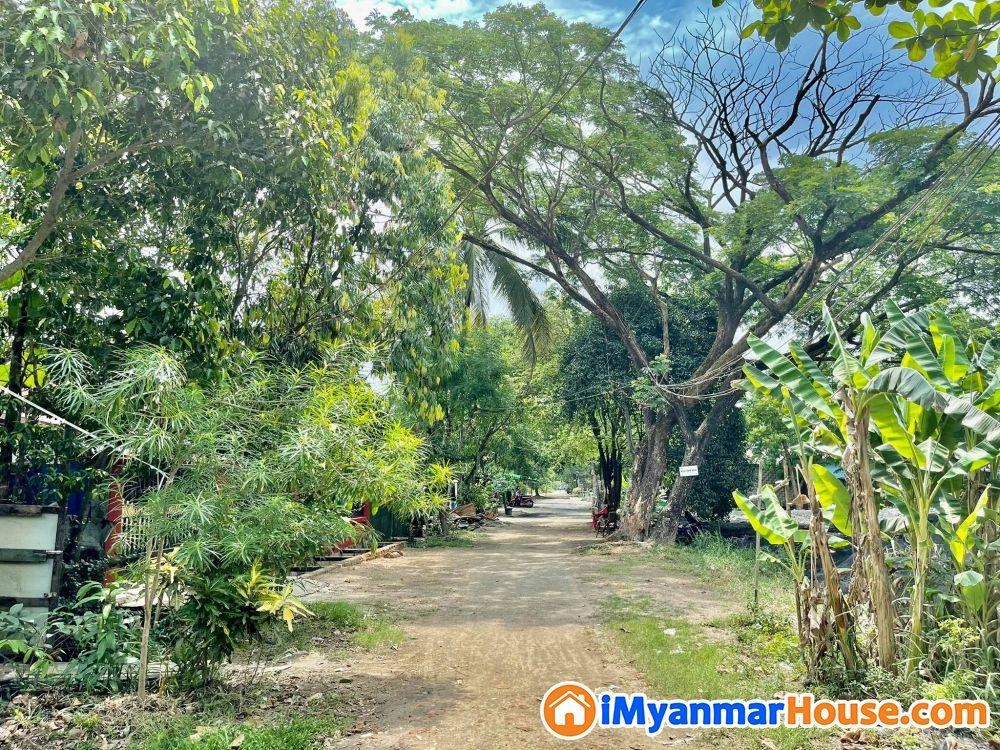  လမ်းမတန်းအနီး အိမ်နှင့်ခြံ ရောင်းမည် သိန်း (260) ကျပ် ( ညှိနှိုင်း )  - ရောင်းရန် - ရွှေပြည်သာ (Shwepyithar) - ရန်ကုန်တိုင်းဒေသကြီး (Yangon Region) - 260 သိန်း (ကျပ်) - S-9091989 | iMyanmarHouse.com