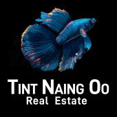Tint Naing Oo Real Estate